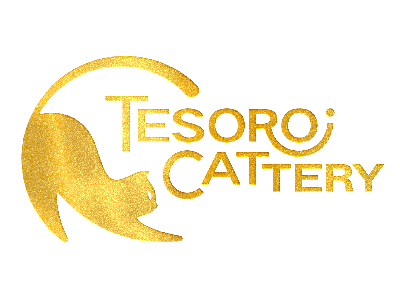 Tesoro Cattery